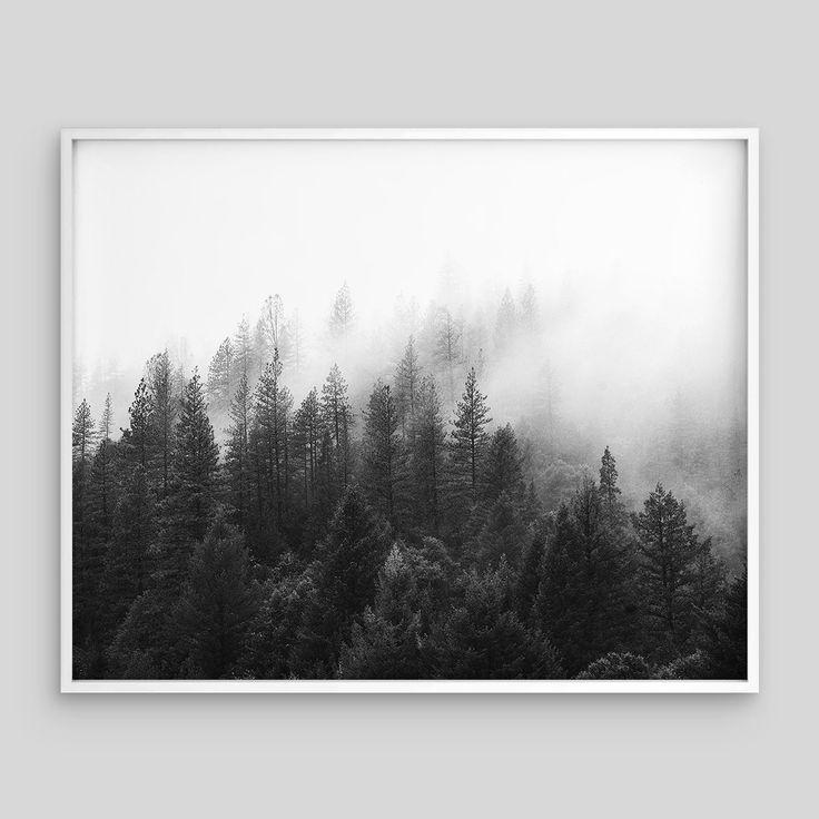 Minimal Fog Forest