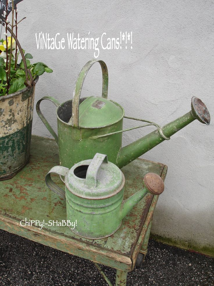ChiPPy! - SHaBBy!: Time-Worn PaTiNa...ViNtaGE GaRdeN BuCKeT...
