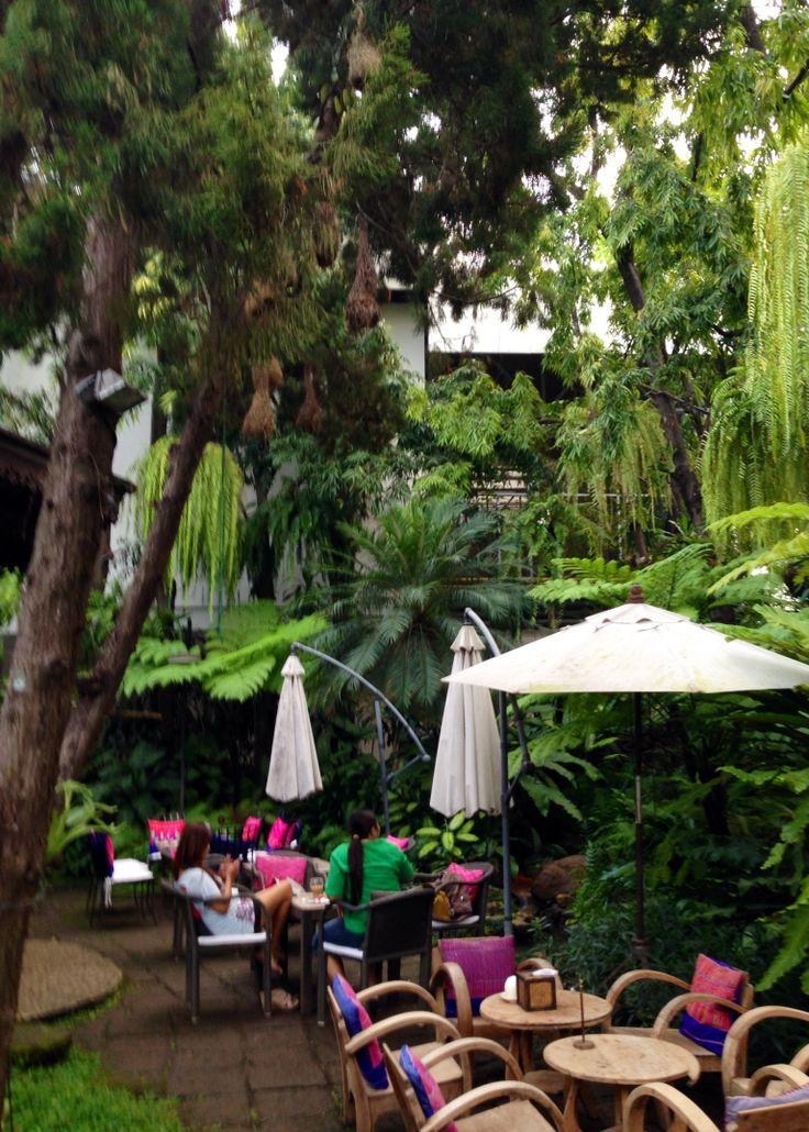 Fern forest tea house - Chiangmai