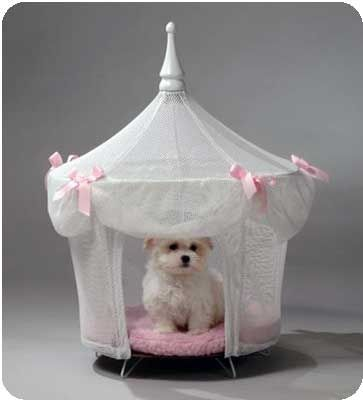 Designer Dog Bed: Now this is why I kind of wanted a girl! Looks just like my baby, but he would look funny in a fru fru house!!