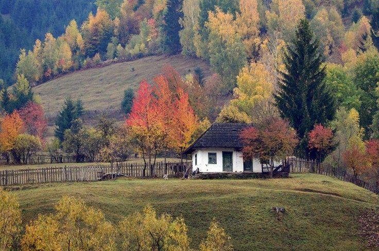 Duminica linistita si colorata intr-un sat din judetul Harghita.    Fotografie realizata de Csoti Bela