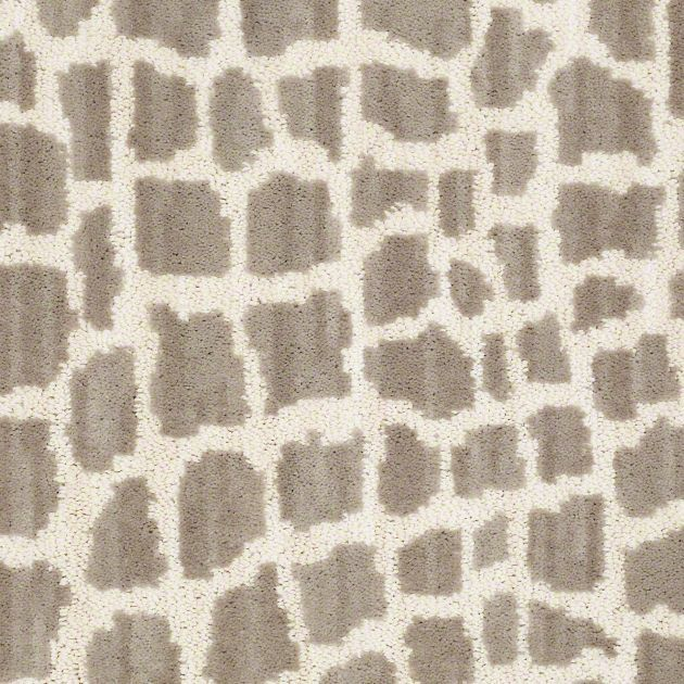 1000 Images About Shaw Carpet On Pinterest Patterned