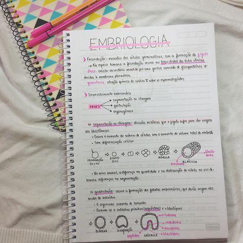 um pouco de embriologia por enquanto as revisões estão sendo por resumos maiores, depois posto os - vestibulas
