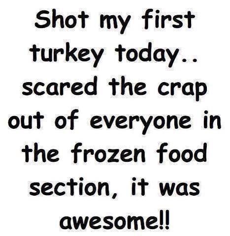 39f829d067e489ed55efe211de98f261 turkey today turkey time 22 best turkey fun images on pinterest ha ha, funny stuff and