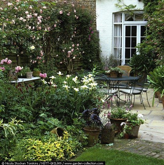 Quiero hacer un jardín frondoso - Foro de InfoJardín