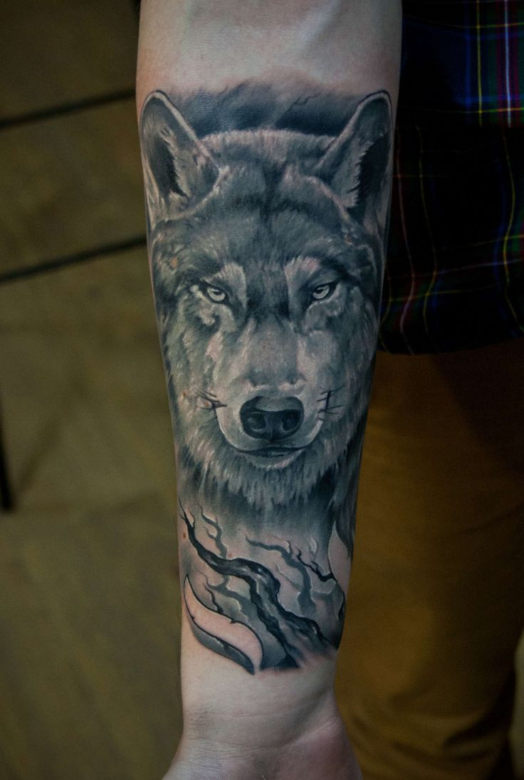 best tattoos images on pinterest tattoo ideas fox and grey wolves