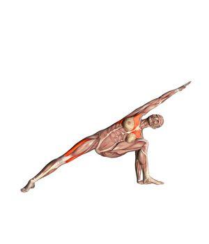 #UTTHITA PARSVOKONASANA Extended left side angle pose | YOGA.com