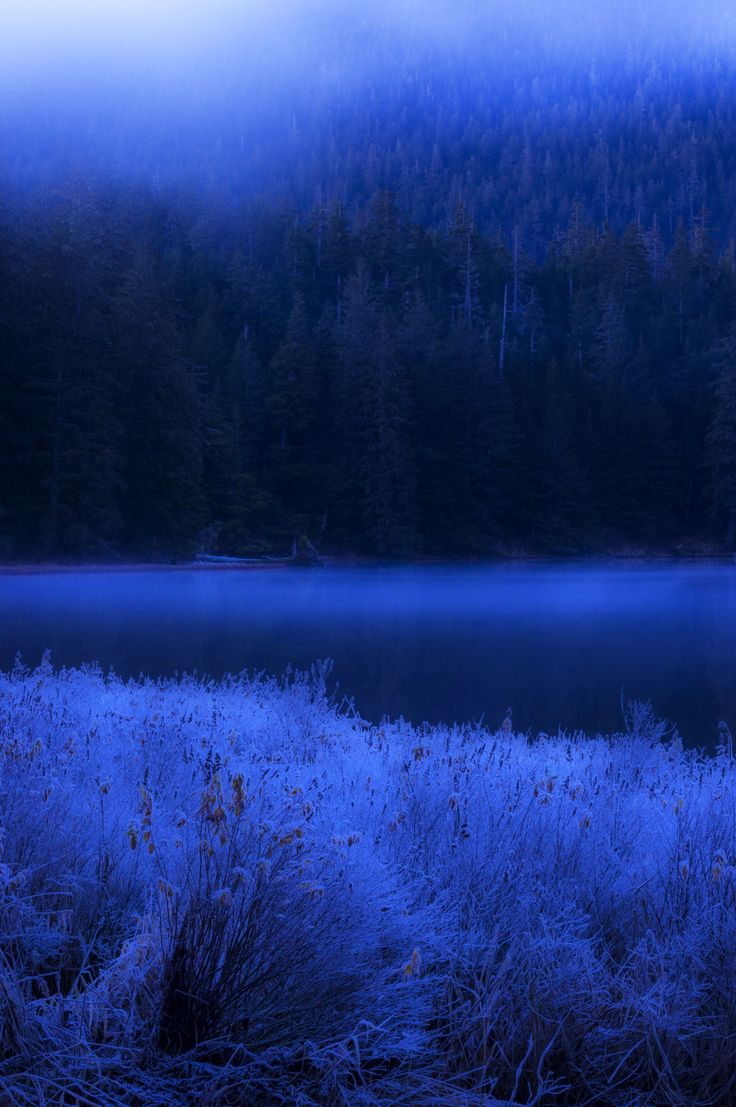 After the twilight by Carlos Rojas on 500px composition, content, palette