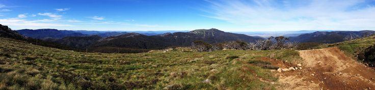 Summer Splendour of Mt Buller