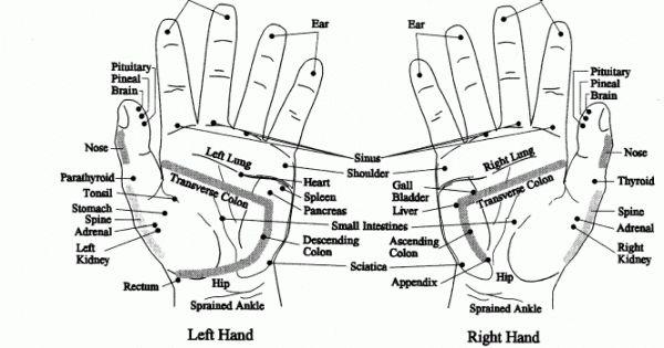 Τα χέρια στην ρεφλεξολογία δουλεύονται συμπληρωματικά στη θεραπεία που κάνουμε στα πόδια. Τα αντανακλαστικά τους σημεία στα χέρια μοιάζουν με εκείνα των πε