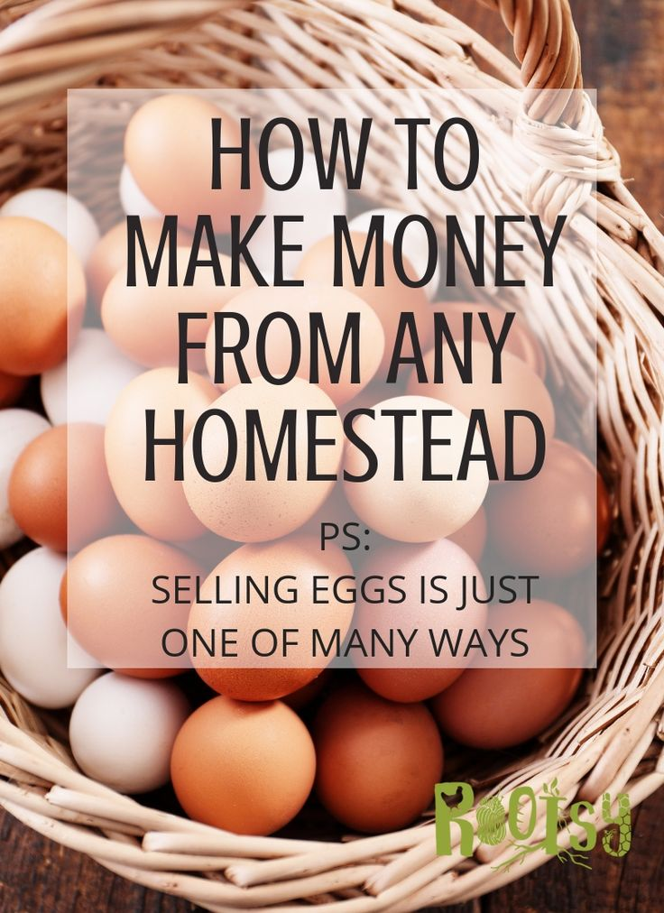 How to Make Money on the Homestead – ✽ Rootsy Blog ✽