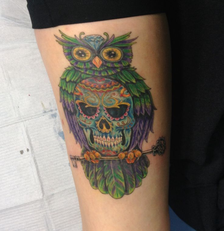 17 best ideas about sugar skull owl on pinterest owl for Owl with sugar skull tattoo