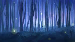 Resultado de imagen para fotos del bosque de noche