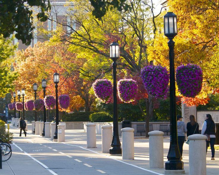 28 best Purdue University images on Pinterest Purdue university