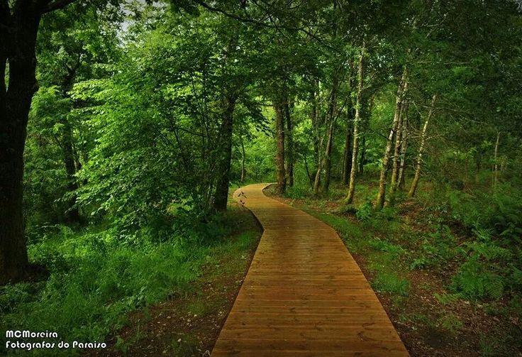 Ruta por el rio Tea en Mondariz #Pontevedra #Galicia #SienteGalicia