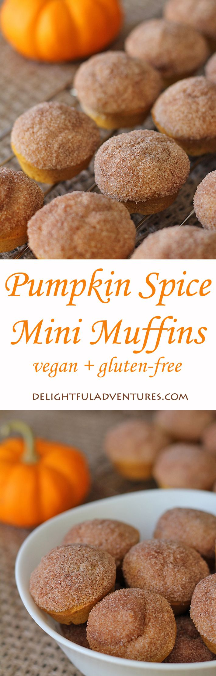 These vegan, gluten-free pumpkin spice mini muffins are the perfect treat for fall—or any other time of year. Enjoy them with a latte or on their own!