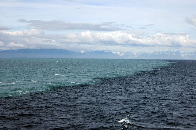 Donde el Mar del Golfo de Alaska se encuentra con el agua de los glaciares (y no se mezclan) Esta maravillosa fotografía muestra la línea donde se encuentran el Mar del Golfo de Alaska y las aguas originadas por el deshielo de los glaciares de la costa. La diferencia de salinidad y densidad del agua impide que se mezclen de una manera eficiente, permitiendo fotografías como esta. El agua de azul oscuro es del mar (salada) y la de azul claro la de origen glaciar (dulce).
