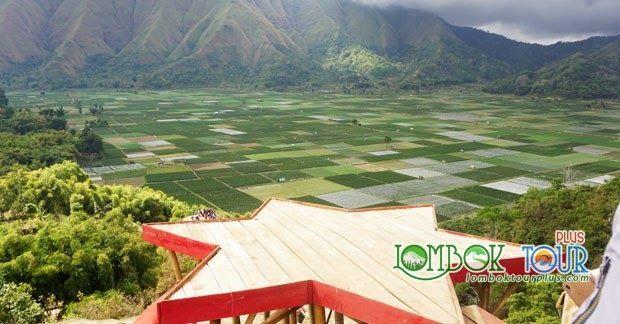 Menakjubkan 30 Pemandangan Lombok Kawah Putih Yang Sudah Banyak Dikenal Orang Akan Keindahannya Ini Terletak Di Puncak Gunu Di 2020 Pemandangan Pulau Lombok Pedesaan