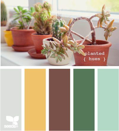 planted huesColours Combinations, Plants Colors, Painting Mood, Plants Hues, Colors Palettes, Color Combinations, Painting Colors, Colors Painting, Design Seeds Com