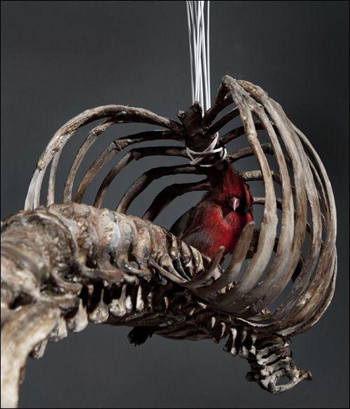 Psychopomps exhibition by Polly Morgan, London
