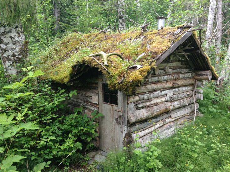 | Bella Coola Cabin | A small cabin with a green roof built from downed trees in Bella Coola, British Columbia, Canada. Owned and shared by Carsten Ginsburg. ~ click on photo for more ~