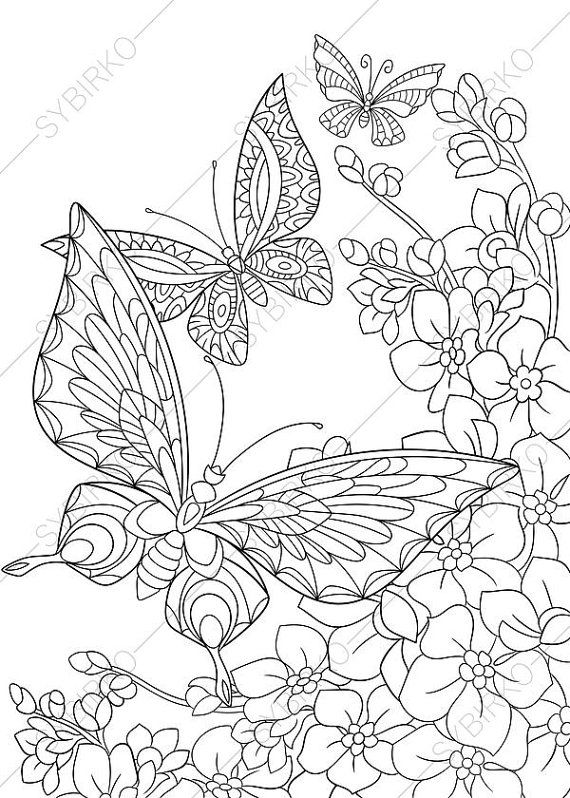 Butterfly and Flowers Coloring Page. Adult by ColoringPageExpress
