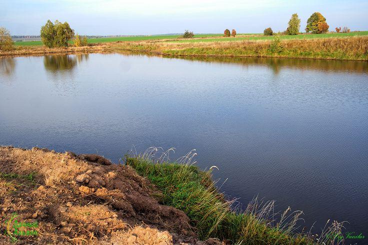 Живописная #местность (вблизи лес, озеро с пляжем, рыбные пруды).
