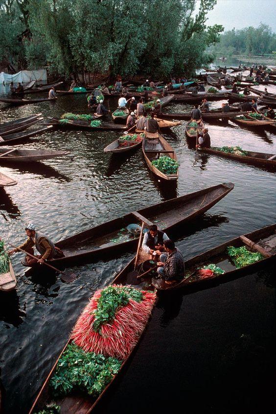 Dal Lake, Srinagar, Kashmir, 1999 - Steve McCurry