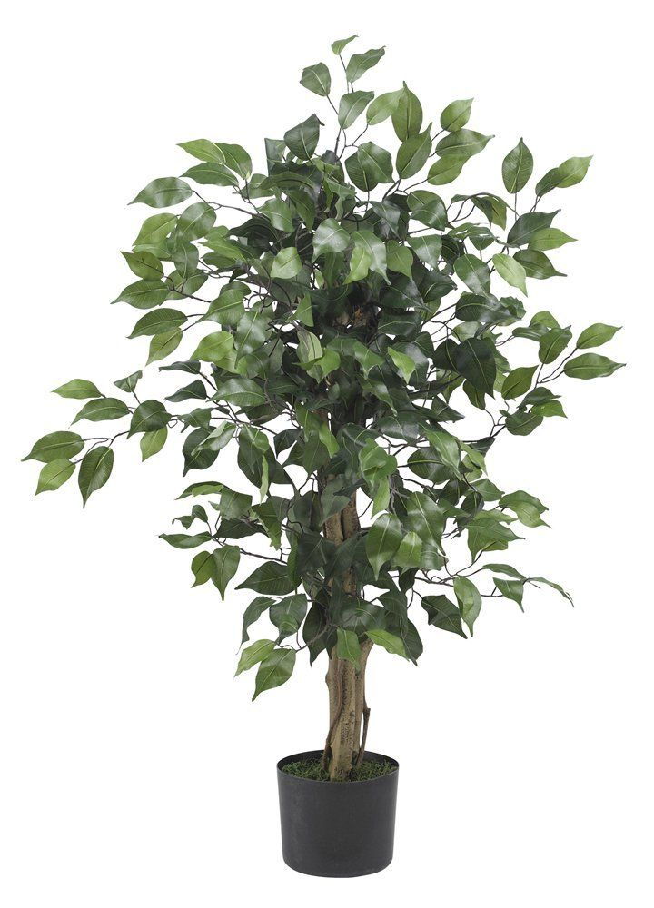 Nearly Natural 5298 Ficus Silk Tree, 3-Feet, Green -- Final call for this special discount  : Artificial Plants Decor
