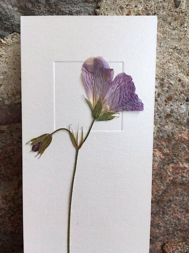 Dried Flower Art / Real Flower Art / Purple Flowers card / Greeting Card - CloeCards by CloeCards on Etsy