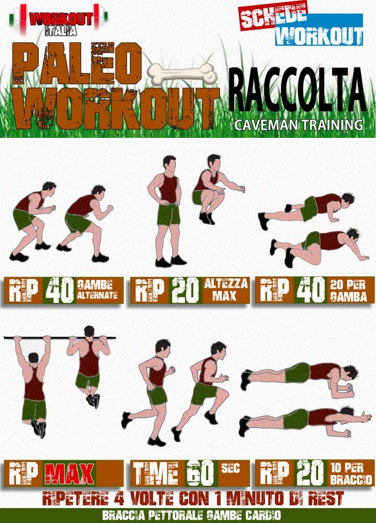 scheda workout raccolta