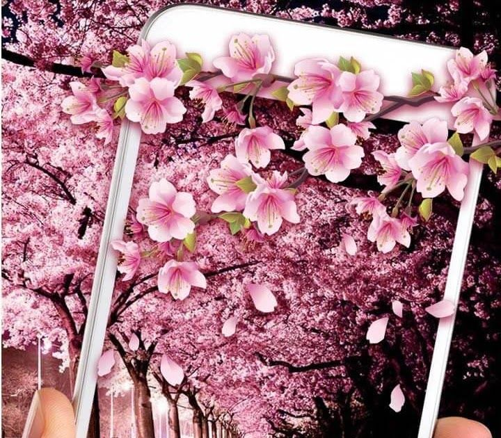 Gambar Bunga Sakura Animasi Bergerak Sakura Flowers Live Wallpaper Aplikasi Di Google Play Recently Shared Bunga Sakura Gamb Bunga Sakura Bunga Gambar Bunga