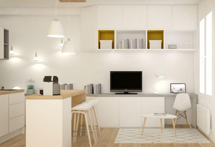 petite surface am nagement studio r novation. Black Bedroom Furniture Sets. Home Design Ideas