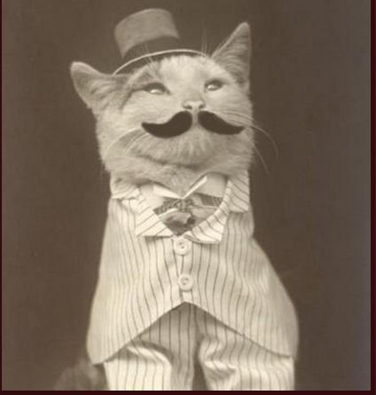 Cute Evil Cat With Mustache And Top Hat
