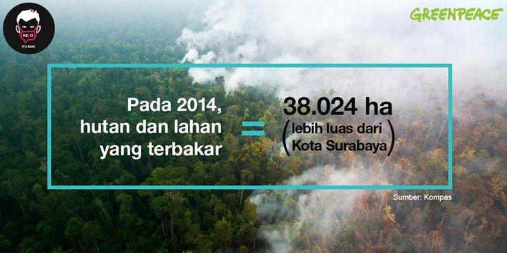 Kebakaran hutan dan gambut pada 2014 lebih luas dari Kota Surabaya. Bagaimana dengan luasan hutan dan gambut Indonesia yang terbakar pada tahun 2015 ini? Cukup sudah, mari kita desak pemerintah untuk membuka data kehutanan kepada publik. Transparansi adalah salah satu cerminan pemerintahan yang baik dan bisa dipertanggungjawabkan.