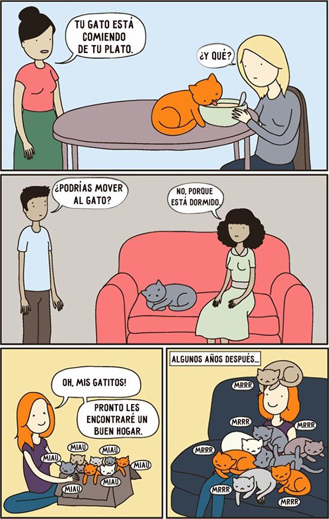 15 cómics que entenderán todos los dueños de gatos - Taringa!