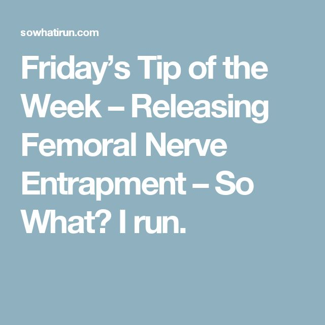 femoral nerve pinterest'te hakkında 25'den fazla en iyi fikir, Muscles