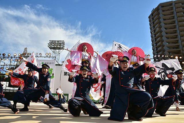 jr九州櫻燕隊ハッシュタグ instagram 写真と動画 よさこい祭り 祭り 長崎