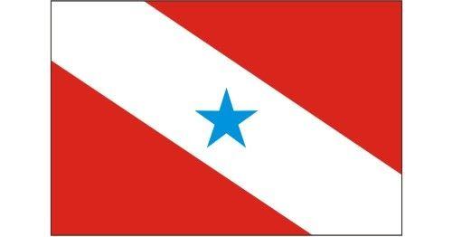 Bandeira do Pará Vetorizada em CDR | Vetores Brasil