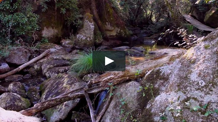 Trilho dos Gaios #nature #river #trilhodosgaios #tabua #portugal #visitportugal #portugaldenorteasul