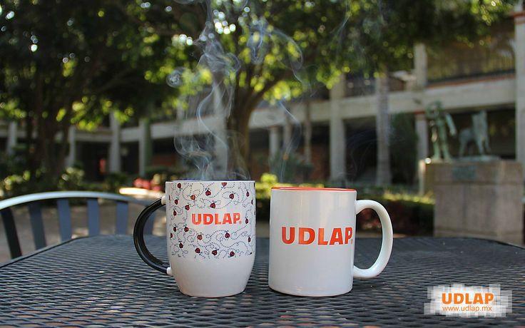 Nada como una bebida caliente para combatir el frío #Tazas #UDLAP #Catarinas