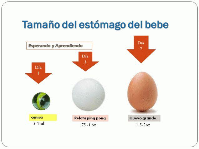 Lactancia Materna: Aumentar la producción de leche materna