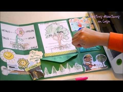 Lapbook Las Plantas - YouTube