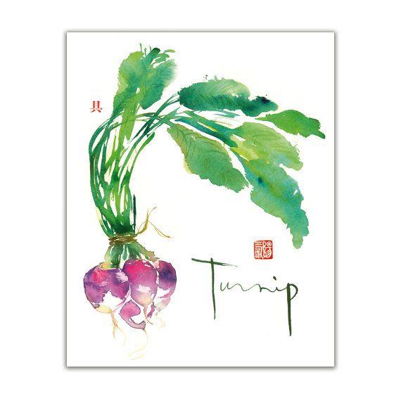Vegetable art - Turnip watercolor painting - Green botanical Kitchen decor
