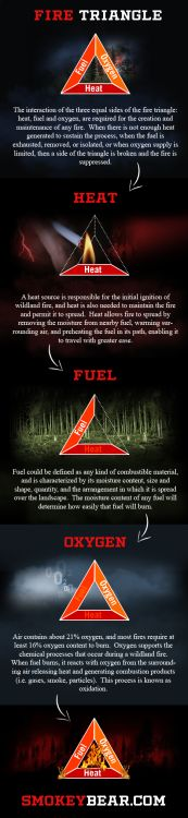The Fire Triangle is a simple way of understanding the factors of fire. Each side of the triangle represents one of the three ingredients needed to have a fire – oxygen, heat, and fuel – demonstrating the interdependence of these ingredients in creating and sustaining fire. #wildfire #wildfireprevention #smokeythebear #fire #infographics http://www.smokeybear.com