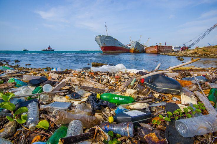 """""""[...] Die Verschmutzung unseres Lebensraumes, auch Umweltverschmutzung genannt, ist ein ständig größer werdendes Problem. Nicht überall sticht es so ins Auge, wie zum Beispiel an den Stränden vor Manila. Dort wurden jetzt von Greenpeace-Mitarbeitern an einem Tag Zentner von Plastikmüll beseitigt. Am nächsten Tag war wieder nur Müll zu sehen, kaum Sand. Inzwischen befänden sich laut Greenpeace etwas 150 Millionen Tonnen Plastik in den Ozeanen. [...]""""  Mit Volldampf in den Untergang!"""