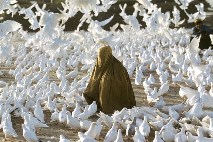 'Pigeon feeding near Blue Mosque', 1991. | 24 Striking Pictures Of Afghanistan By Photojournalist Steve McCurry