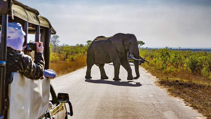 Afrika - szafari - utazási ajánlatok OTP Travel Utazási Iroda