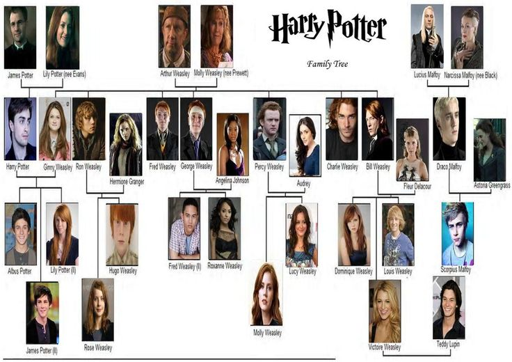 Harry Potter Family Tree by MooyongRocks