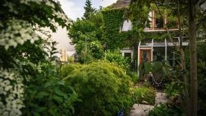Offene Gartenpforte - Ursula Rombusch macht bei der jährlichen Aktion  mit und öffnet ihren Garten am Wochenende für jedermann